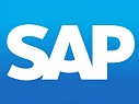 What does a SAP Professional do?